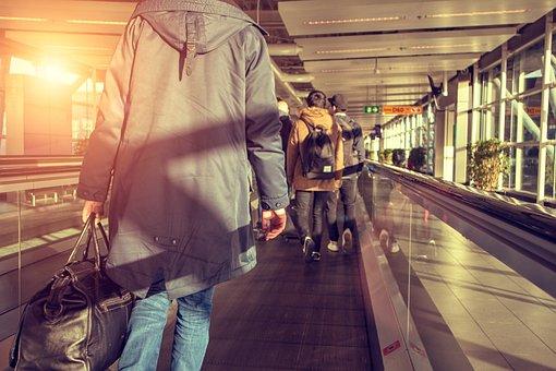 Traveler, Airport, Luggage, Vacation, Tourism, Flight