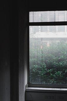 Window, Mood, Fog, Building, århus, Aarhus, Ibm
