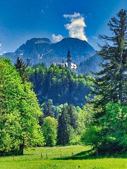 Castle, Mountains, Trees, Field, Meadow, Grassland
