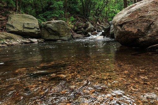 River, Rocks, Forest, Creek, Stream, Water, Scenic