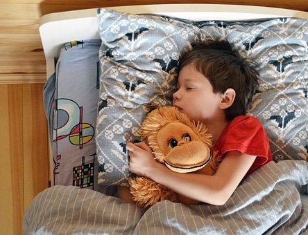 Baby, Boy, Dream, Sleeping, Toy, Portrait, Sweet Dream