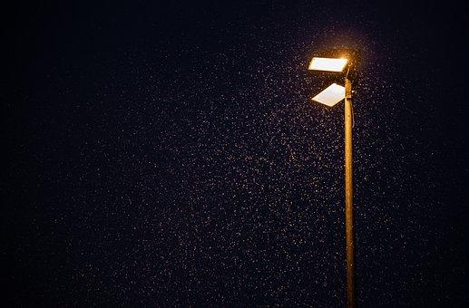 Street Light, Snow Storms, Snow, Winter, Light, Lamp