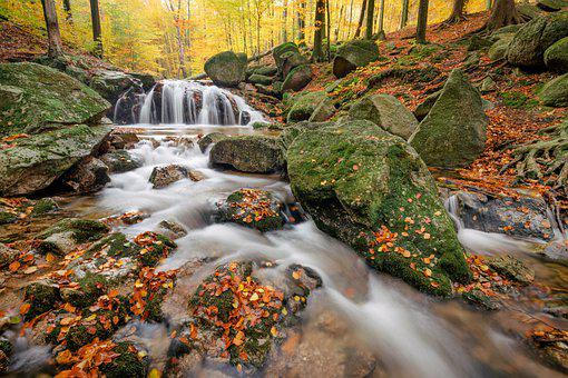 Autumn, River, Rocks, Water, Woods, Forest, Flow