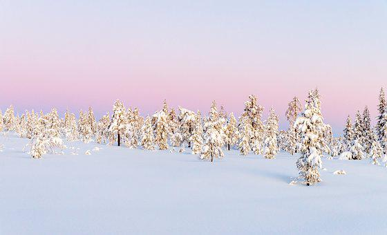 Winter, Landscape, Snow, Nature, Cold, Ice, Wintry