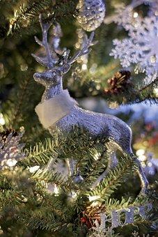 Christmas Background, Deer, Christmas, Snow, December