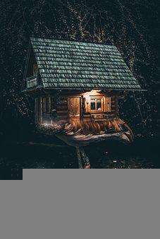 Cottage, House, Paws, Bird, Photoshop, Fantasy, Art