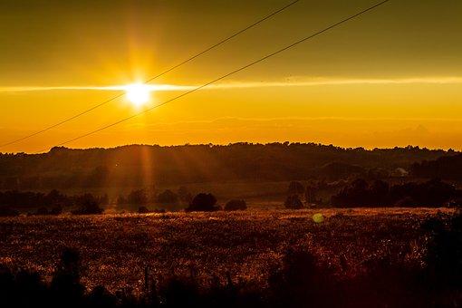 Sunset, Yellow, Sky, Sun, Landscape, Sunny, Dusk, Field