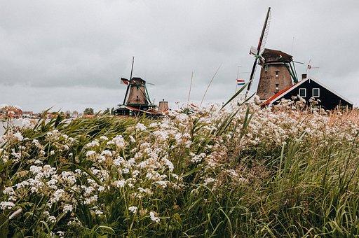 Windmill, Holland, Mill, Dutch, Wind, Water, Landscape