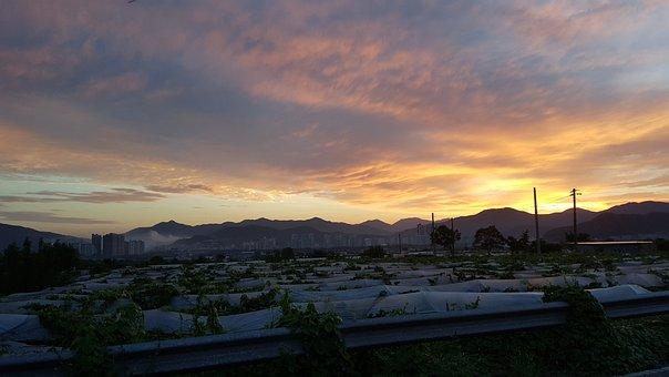 Sunrise, Farm, Sky, Agriculture, Sunset, Dusk, Dawn