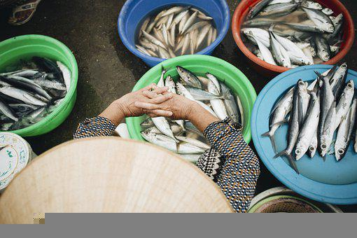 Fish, Fish Market, Sell, Woman, Vietnam, Fresh Fish