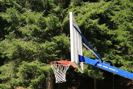 Basketball, Rim, Hoop, Net, Game, Sport, Backboard