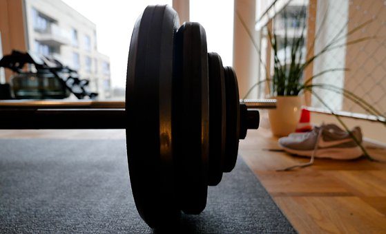 Sport, Dumbbell, Weight, Barbell Weights, Barbell