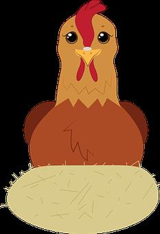Hen, Chicken, Egg, Poultry, Animal, Farm, Bird, Chick