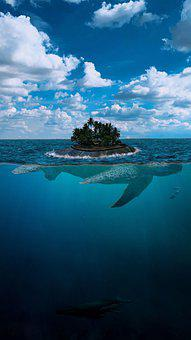 Large, Turtle, Sea, Island, Floating, Mythical, Dolphin