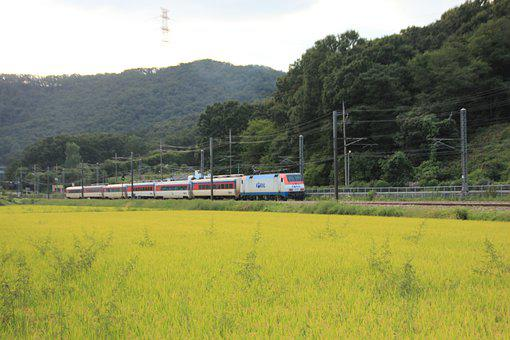 Korea, Railway, Transportation, Train, Vehicle