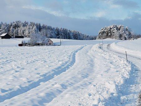 Winter, Snow, Wintry, Snow Landscape