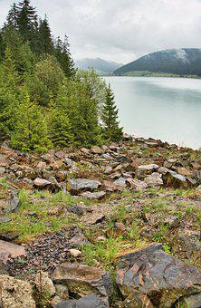 River, Bank, Rocks, Trees, Grass, Rocky, River Bank