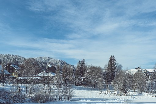 Houses, Trees, Snow, Village, Buildings, Snowy, Wintry
