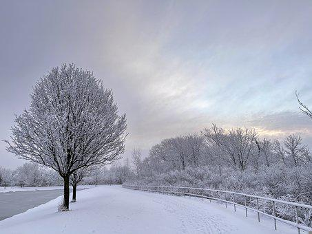 Winters Morning, Snow, Winter, Morning, Landscape, Cold