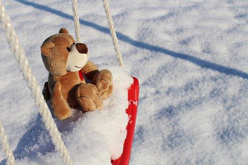 Teddy, Snow, Winter, Cold, Frosty, Frozen, Bear