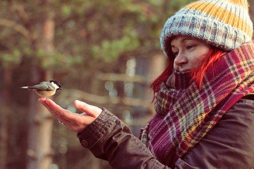 Woman, Winter, Bird, Coal Tit, Animal, Wildlife, Hand