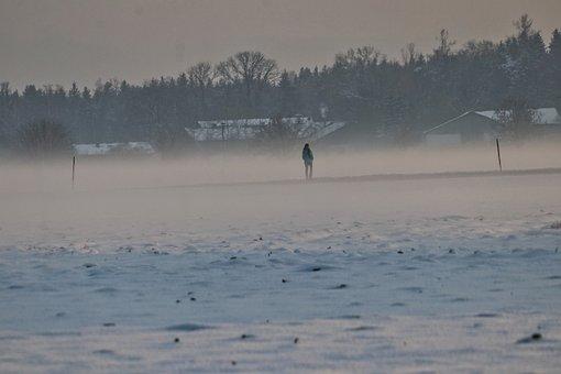 Fog, Walk, Landscape, Mood, Winter