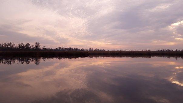 Mirror, Water, Mirroring, Nature, Landscape, Reflection