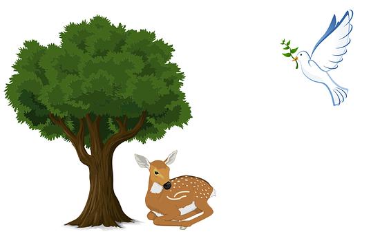 Dove, Deer, Tree, Flying, Bird, Animal, Pigeon