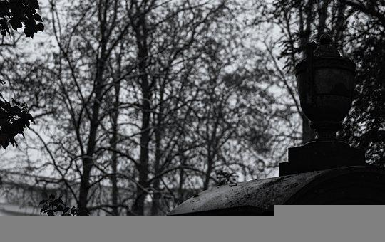 Urn, Tombstone, Trees, Cemetery, Monochrome, Mourning