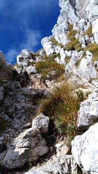 Rocks, Mountain, Trail, Rocky Mountain, Slope, Grass
