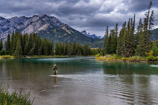 River, Fishing, Mountains, Fisherman, Man, Water, Trees
