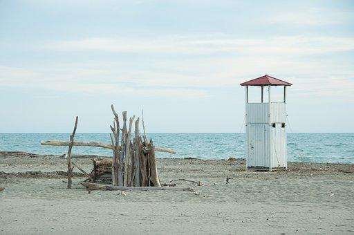 Sea, Beach, Wood Trunks, Regulatory Storm, Sand