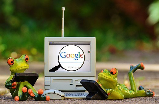 Frogs, Computer, Google, Search, Laptop, Funny, Cute