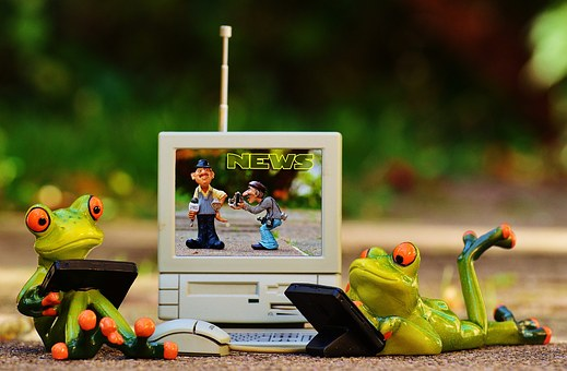 Frogs, Computer, News, Laptop, Funny, Cute, Fig, Sweet