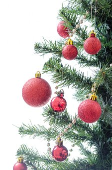 Tree, Present, Xmas, Decorated, Isolated, Decoration