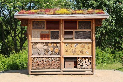Insect House, Hibernate, Wood, Insect, Insect Hotel