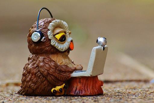 Owl, Computer, Headphones, Funny, Laptop, Notebook