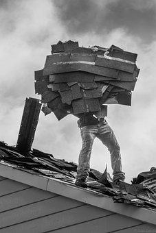 Work, Workman, Worker, Man, Working, Person, Male