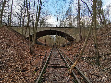 Bridge, Track, Rails, Abandoned, Steel, Trees, Forest