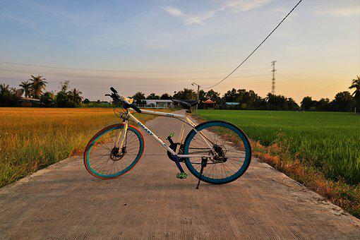 Sunset, Bike, Bicycle, Cycling, Nature, Silhouette