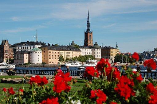 Stallion, Sweden, Summer, Lake, Mar, Europe