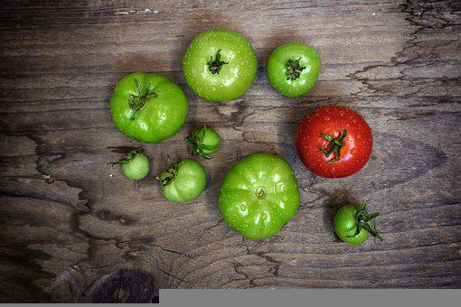 Vegetables, Tomatoes, Gün, Eat, Food, Healthy, Fresh