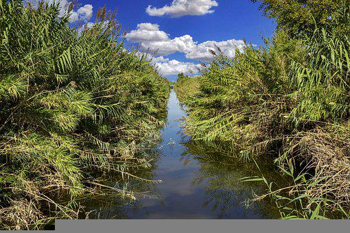 River, Ditch, Irrigation, Stream, Nature, Channel