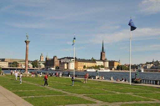 Stallion, Sweden, Holidays, Landscape, Travel, Nature