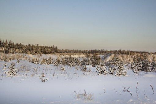 North, Landscape, Road, Travel
