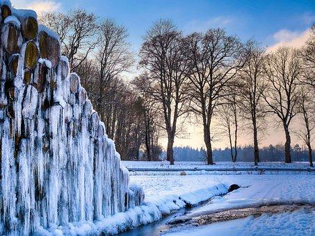 Tree Trunks, Logs, Frozen, Snow, Frost, Ice