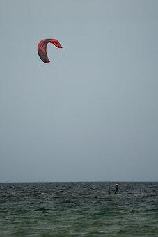 Ocean, Surfer, Sea, Surf, Beach, Water, Wave, Nature