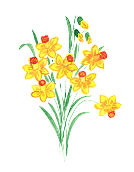 Daffodil, Daffodils, Spring, Flower, Bouquet, Sheet