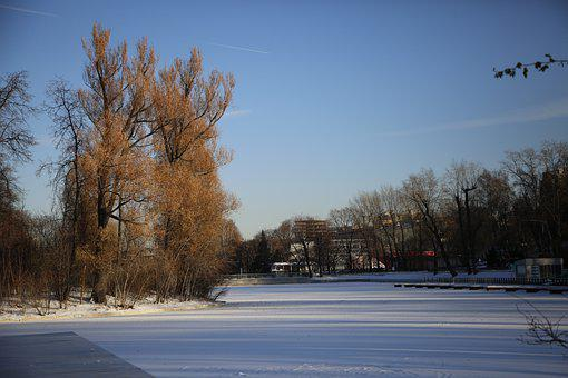 Winter, Moscow, Park, Russia, Cold, Snow, Nature
