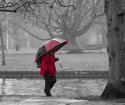 Rain, Umbrella, Person, Walking In The Rain, Red